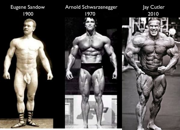 bodybuilder shapes over time